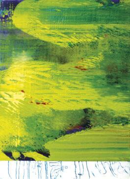 ramon-suau-identites-02